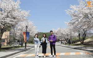 Học bổng du học Hàn Quốc cho học sinh cấp 3