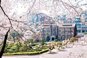 Săn học bổng toàn phần du học Hàn Quốc